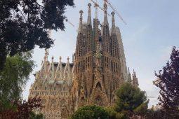 Madrid – Barcellona: sola andata
